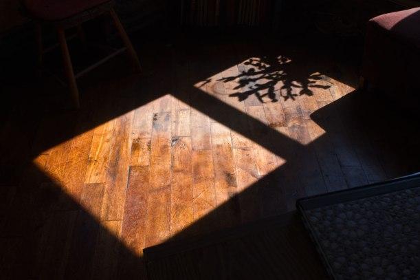 SunPatchonFloorApril2014