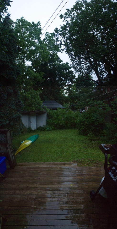My new back yard is shaded by trees that are hundreds of years old - oak, walnut, spruce, ash.  I feel perfectly small out there swimming in all the wet green