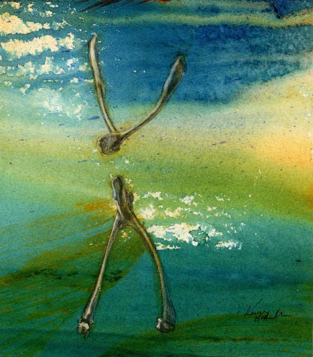 """""""wishbones"""", 1999, 6x8"""", acrylic and graphite on paper. Sold"""