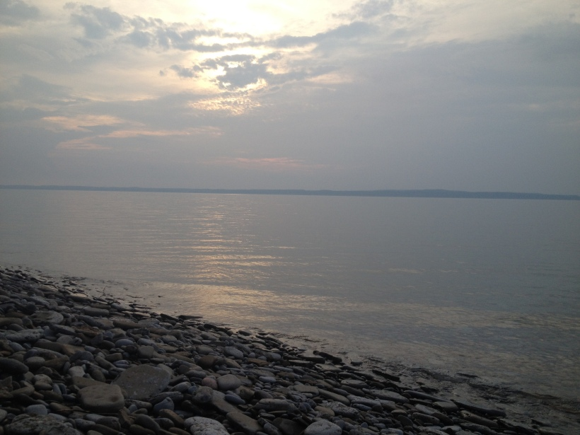ShoreAug